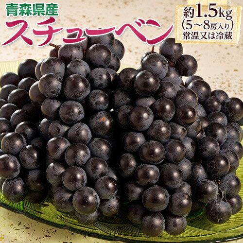 葡萄 ぶどう ブドウ青森県産 黒ぶどう スチューベン 5〜8房 約1.5kg 送料無料 常温又は冷蔵
