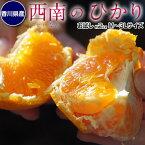 みかん 柑橘 香川県産 新品種のみかん 西南のひかり お試し 約2kg 秀〜優品 M〜3Lサイズ 送料無料