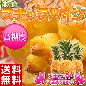 《送料無料》沖縄産 スナックパイン 3玉 (1玉 約500g) frt ○