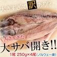 大きすぎた「大サバ開き」!!4尾 約1kg ※冷凍 sea ○