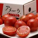 知名度No.1ブランド『アメーラトマト』 静岡・長野産 3S〜2L 約900g(7〜23玉入) ☆