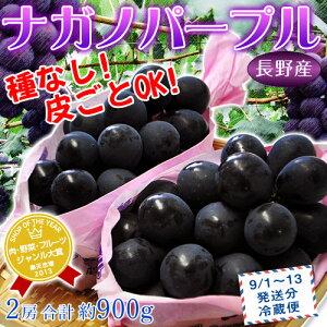 皮ごと食べられる種なしブドウ。甘さもとびきり!《送料無料》長野産ぶどう ナガノパープル 2...
