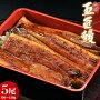《送料無料》鹿児島産うなぎ蒲焼「五匠鰻」約120g×5尾※冷凍sea☆