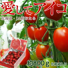 北海道産 「愛してアイコトマト」 約800g 化粧箱入り ※冷蔵 ○