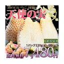 幻の白いちご《送料無料》佐賀産 白いちご 天使の実   約220g(4~8玉)2パック