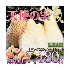 《送料無料》佐賀産 白いちご 天使の実   約220g(4~8玉)2パック
