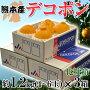 《送料無料》熊本産露地栽培「デコポン」4〜6玉約1.2kg×3箱frt○