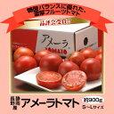 知名度No.1ブランド静岡・長野産 「アメーラトマト」 1箱 S〜Lサイズ(8〜16玉) 約900g
