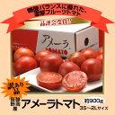 訳アリの為破格静岡・長野産 アメーラトマト 1箱 3S〜2Lサイズ 約900g 《訳あり品》