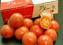品評会受賞・全国の野菜ソムリエが認めたトマト!【濃厚フルーツトマト!】 静岡・長野産 アメーラトマト 1箱 S〜Lサイズ 約900g