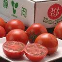 市場で評判の高い、静岡の「フルーツトマト」高糖度フルーツトマト 静岡産「訳ありスイートピ...