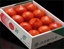 高糖度フルーツトマト訳あり品群馬産 『初恋トマト』《形状不揃い品》 3S〜2Lサイズ 約900g(6〜22玉)