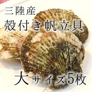 活ホタテ 殻付きホタテ 特大サイズ 海鮮 バーベキュー 約300g/枚 計5枚(約1.5kg)…