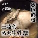 生牡蠣(加熱用)特大サイズ!三陸産 他 牡蠣鍋 正味約500g(約10−15個)[豊洲直送]年末年始 グルメ 鮮魚【加熱用牡蠣500g】 冷蔵