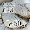 旨くてレアな貝類を築地よりお届け!白貝 築地直送 北海道産 約500g 約50-60g/1枚 シロガイ サ...