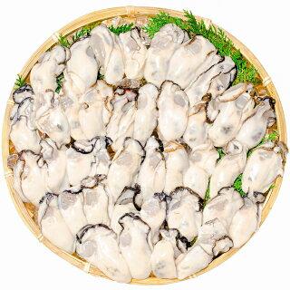 【生牡蠣生食用カキ】生牡蠣1kg<解凍後850g・冷凍むき身牡蠣・生食用>新製法で冷凍なのに生食可能な牡蠣で濃厚な風味【冷凍生ガキかきカキ牡蛎牡蠣鍋カキフライ牡蠣フライ築地市場レシピギフト】【楽ギフ_のし】