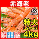 【送料無料】赤海老 赤えび 4kg 特大 L2 30〜60尾 業務用 ...