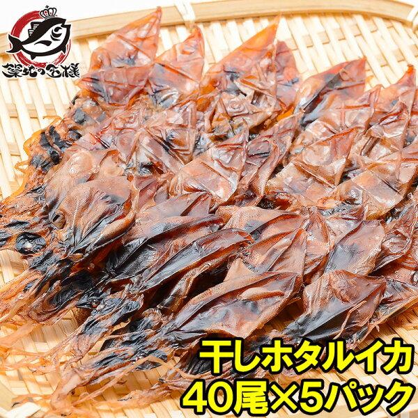 ホタルイカ素干し干しほたるいか40尾×5パックシーズン最盛期の富山産ほたるいか干物は大きくて旨みが凝縮  ほたるいかほたるイカ蛍