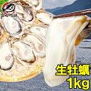 【生牡蠣 生食用カキ】生牡蠣 1kg 冷凍時1kg 解凍後8...