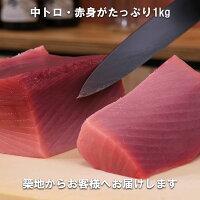 国産生本マグロ(養殖)背ブロック赤身