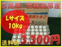 【送料込】世羅高原たまご 白玉 Lサイズ 10Kg詰め (1