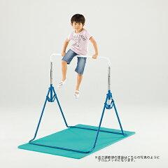 レビューを書いて割 鉄棒 日本製 保育園や幼稚園で実際に使用されている室内鉄棒 SG 送料無料鉄...