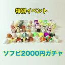 商品写真:<2021年9月限定> ソフビ2000円ガチャ ランダム抽選