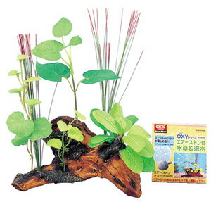 ジェックス OXYウッド 水草&流木 APW-M (1個) 水槽飾り レイアウト用品