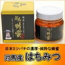 日本ミツバチの対馬産天然はちみつ300g【純粋はちみつ】【化粧箱入り】【お歳暮】