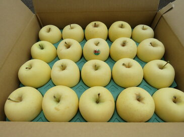 【送料無料】 青森県産りんご 家庭用 金星5kg家庭用りんご青森 りんご 5kg 送料無料お歳暮 ギフト