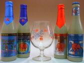 デリリウム(デリリュウム)4種類(トレメンス&ノクトルム&レッド&25周年)+専用グラス1個セット 【ビール】【ビア】【BEER】【ベルギー】