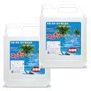 ココナツ 洗剤 お徳用4L 2本セット 【健康と環境をまもる...