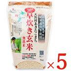 《送料無料》大潟村あきたこまち生産者協会 大潟村あきたこまち早炊き玄米 無洗米 栄養機能食品 (鉄分)1kg × 5袋 ケース販売