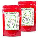 《メール便選択可》日本生菌研究所 アリメミルク プラセンタ+ 犬用 90g × 2袋 セット