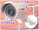 【SA-50556】ダミ−防犯カメラ(ソーラー充電式バッテリー内蔵 屋外防雨仕様) ダミーカメラ(シルバー)