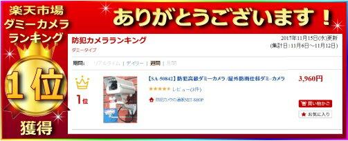 通販NET『防犯用ダミーカメラSA-50842』