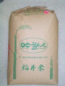 福井県産ハナエチゼン23年産新米1等米30kg玄米