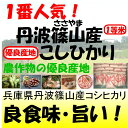 兵庫県丹波篠山産コシヒカリ新米29年産1等米30kg玄米