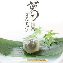 葛まんじゅう抹茶5個入人気ギフト手土産京都和菓子