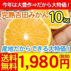 完熟吉田みかん10kg 送料無料1980円