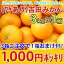 【3kg×1箱1000円ポッキリ】【3箱ご注文で1箱おまけ付】【甘くてジュースのような味の濃さです...