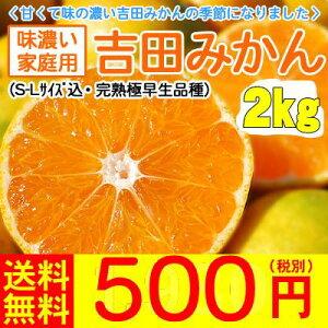 【全国どこでも送料無料です。】今年も甘くて味の濃い吉田みかんの季節になりました。【y02】【...