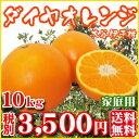 【Fダ10】【愛媛県産】ダイヤオレンジ10kg(大谷伊予柑)(家庭用・大小サイズ込)【全国どこでも送料無料】