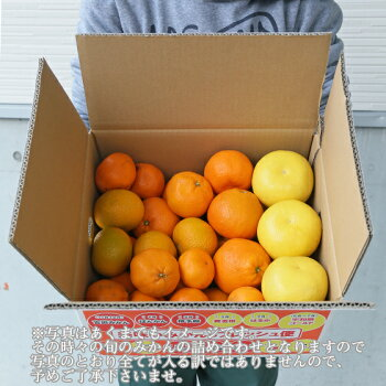 【f07】【予約販売】吉田みかん詰め合わせファミリーセット7kg【多少の枝傷・葉傷・黒点等が含まれます。】【送料無料】みかん柑橘フルーツ果物