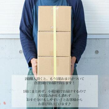 【f02】【予約販売】吉田みかん詰め合わせファミリーセット2kg※2箱ご購入頂くともう1箱おまけがついて合計3箱でお届け致します!【多少の枝傷・葉傷・黒点等が含まれます。】【送料無料】みかん柑橘フルーツ果物