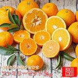 【f 05】吉田みかん 詰め合わせ ファミリーセット 5kg【多少の枝傷・葉傷・黒点等が含まれます。】【送料無料】デコポン でこぽん 黄清見 ダイヤオレンジ はるか 伊予柑 土佐文旦 せとか ひめのつき
