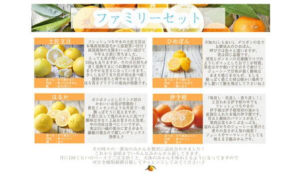 【f02】吉田みかん詰め合わせファミリーセット2kg※2箱ご購入頂くともう1箱おまけがついて合計3箱でお届け致します!【多少の枝傷・葉傷・黒点等が含まれます。】【送料無料】みかん柑橘フルーツ果物