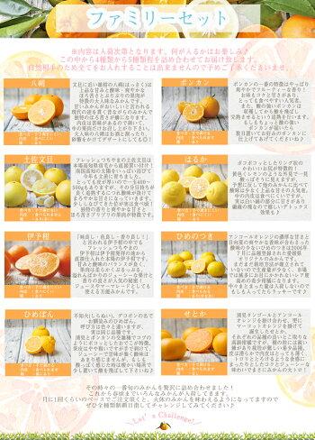 【f07】吉田みかん詰め合わせファミリーセット7kg【多少の枝傷・葉傷・黒点等が含まれます。】【送料無料】みかん柑橘フルーツ果物