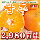 【W甘平5】【愛媛県産】甘平5kg(ワケあり・家庭用・サイズ込み)愛媛の希少柑橘皮が薄く果肉がぎっしり詰まった甘いみかんです。【全…