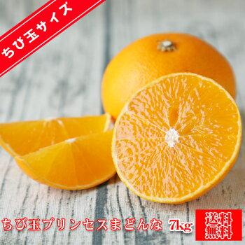 【fpm05】プリンセスまどんな5kg(多少の枝傷・葉傷・黒点有り)(家庭用・サイズ込み・バラ入り)【送料無料】みかんミカン吉田みかん蜜柑柑橘まどんな愛媛県果試第28号紅まどんな